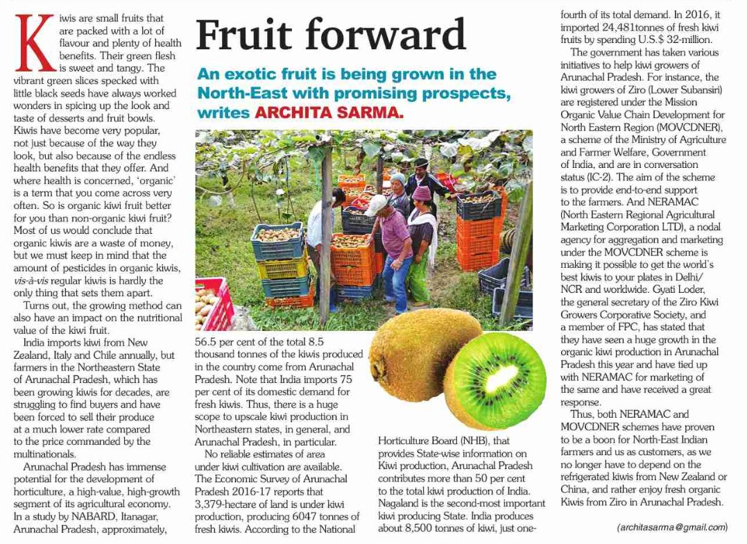 An article on Kiwi from Arunachal Pradesh on The Assam Tribune dated 16-12-2018